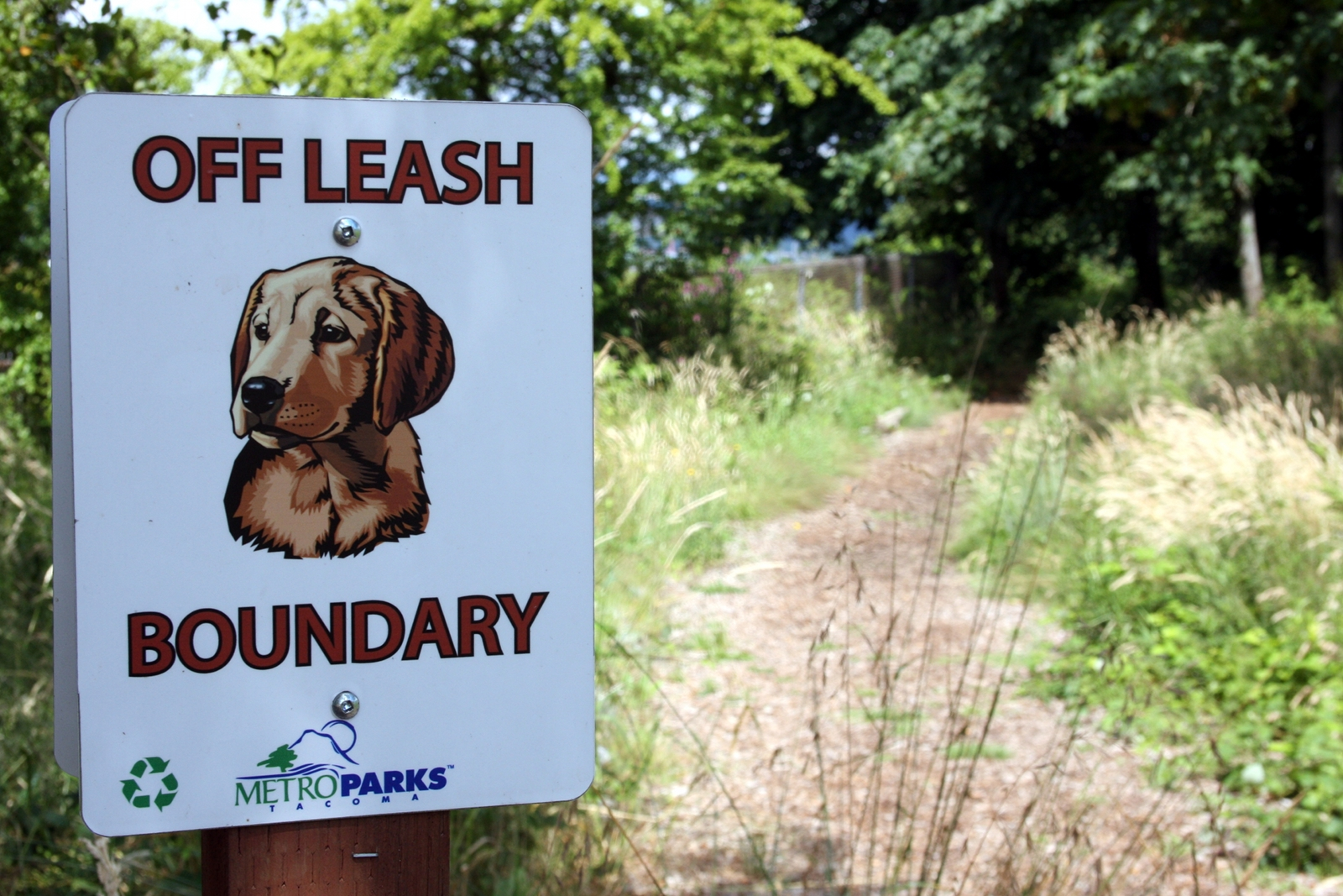 Within the past couple years, an off-leash dog area was designated in McKinley Park in a forested location with a trail leading down to a fenced area just beside Interstate 5.