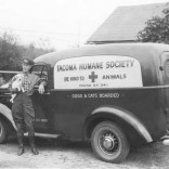 "In 1937, generous donors made it possible for the Tacoma Humane Society to purchase a new truck for transporting animals. The ""Be Kind to Animals"" slogan is prominently displayed across the side. Shown here is Harold A. Dennison, the animal shelter caretaker, with the first animal to ride in the new truck; the little white dog had been found in a ditch, abused and tied up in a gunny sack. The van made it possible to treat him quickly and get him back to the shelter safely."
