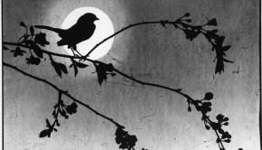 Virna Haffer photogram Bird on a Cherry Branch