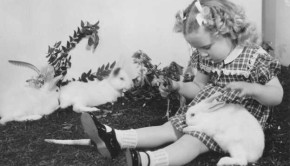 Taken in 1947, this image shows two and a half year old Janet Louise Ellingson feeding one of the white rabbits she received as an Easter gift. The bunnies, who came from the Pet Supply Shop that once graced Pacific Avenue, entertain young Janet while she waits for the Easter egg hunt to begin.