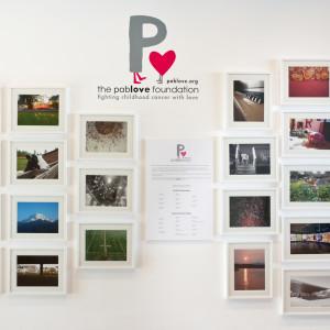 20150611 Pablove Shutterbugs Gallery Opening